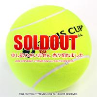 デビスカップ(DAVIS CUP) 11インチ ジャンボテニスボール 国内未発売