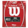 ウイルソン(Wilson) ナチュラルガット 16G (NATURAL 16) テニスガット パッケージ品