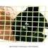 トーナ TOURNA テニス ストリングメーター 簡易テンションテスター テニス用品の画像2