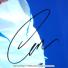 ニコライ・ダビデンコ選手 直筆サイン入り記念フォトパネル 2010年全豪オープン JSA authentication認証 オーストラリアオープンの画像6