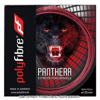 【在庫処分特価】ポリファイバー(Polyfibre) パンテーラ(Panthera) レッド 1.25mm ポリエステルストリングス テニス ガット パッケージ品